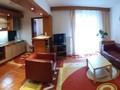 Flat/Apartment for Rent in Sinaia (Prahova, Romania), 350 €