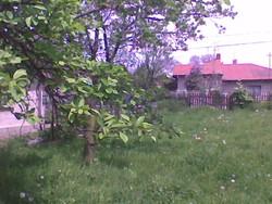 Teren Intravilan de Vanzare in Campina (Voila, Prahova)
