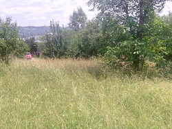 Teren Intravilan de Vanzare in Breaza (Semicentrala, Prahova)