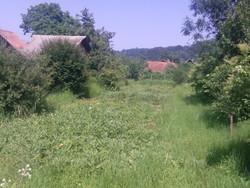 Teren Intravilan de Vanzare in Brebu (Megiesesc, Prahova)