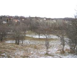 Teren Intravilan de Vanzare in Campina (Semicentrala, Prahova)