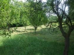 Teren Intravilan de Vanzare in Cornu (Cornu de Jos, Prahova)
