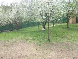 Teren Intravilan de Vanzare in Breaza (Clubul de Golf, Prahova)