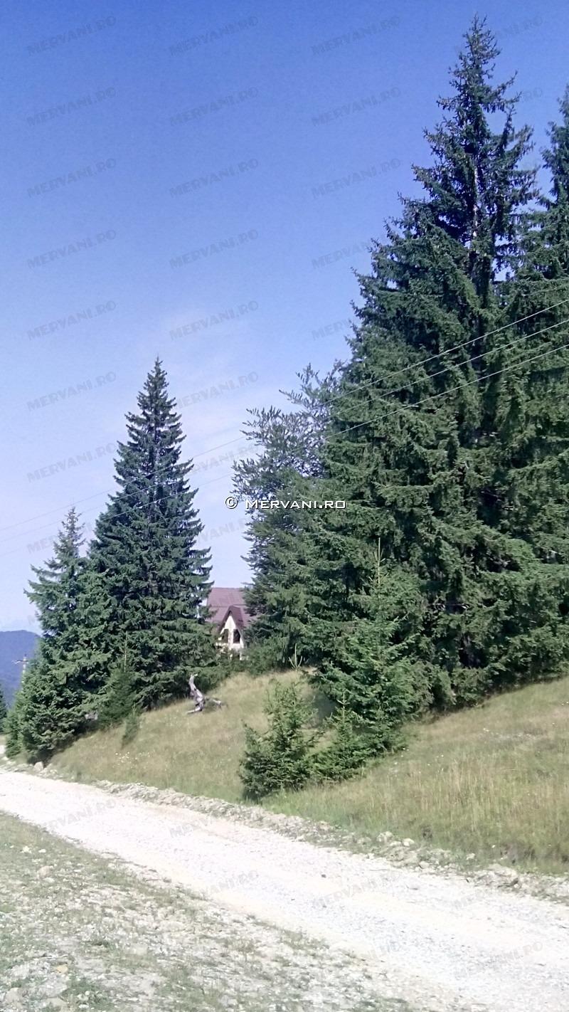 X3158A – Teren de Vanzare in Rasnov, zona Semicentrala