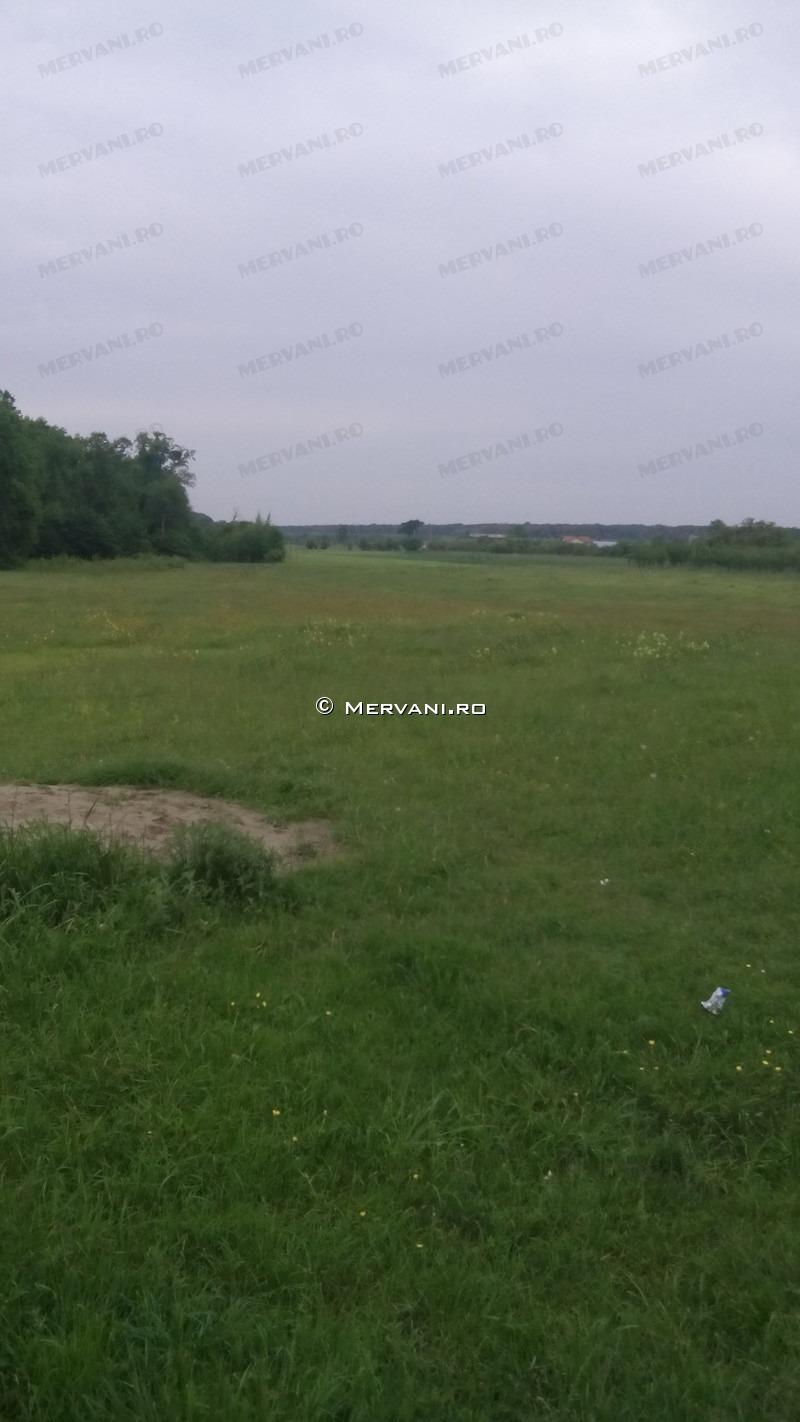 X316DF – Teren de Vanzare in Mislea, zona Semicentrala