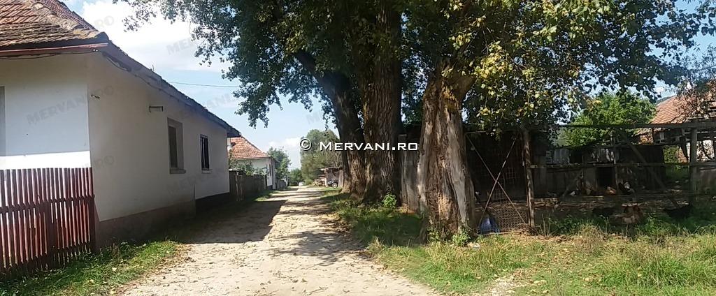 X31782 – Teren de Vanzare in Rasnov, zona Glajeriei