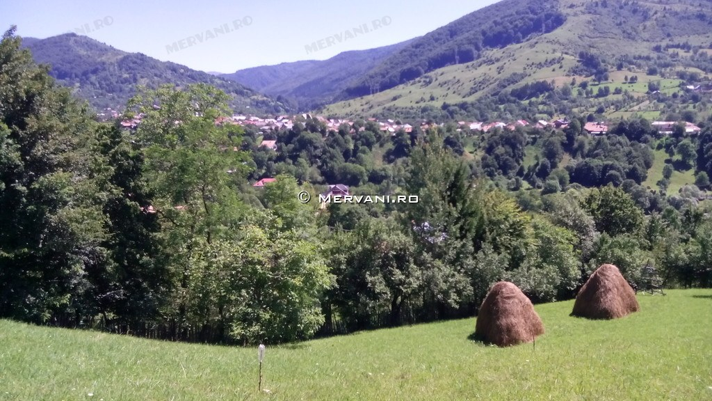 X317C8 – Teren de Vanzare in Valea Doftanei, zona Traisteni