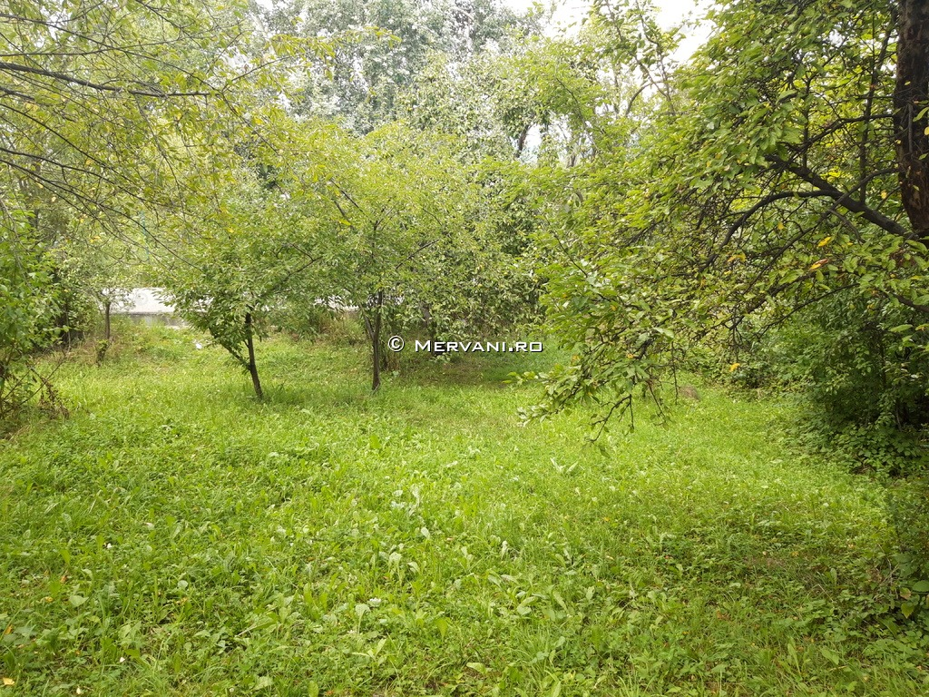 X11C07 – Casa cu 0 camere de Vanzare in Poiana Campina, zona Ragman