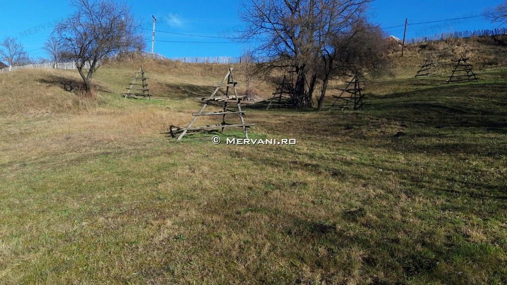 X31C7A – Teren de Vanzare in Valea Doftanei, zona Traisteni