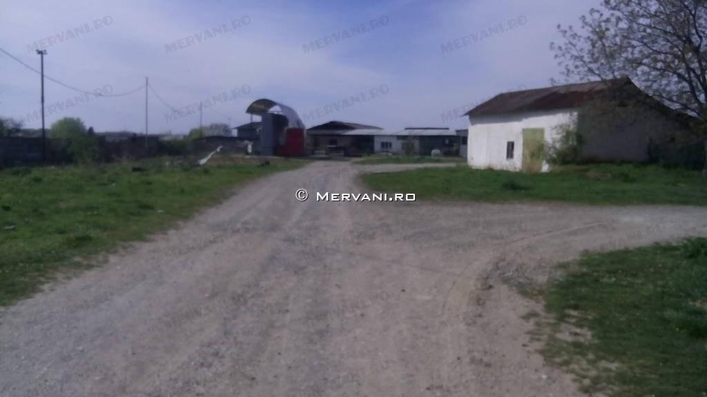 X31C9D – Teren de Vanzare in Baicoi, zona Semicentrala