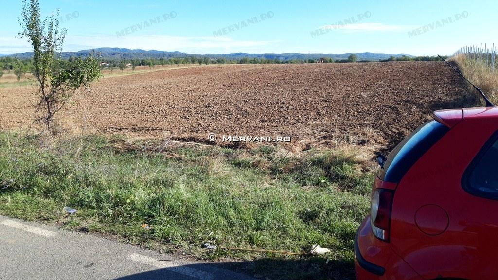 X31CEF – Teren de Vanzare in Banesti, zona Urleta