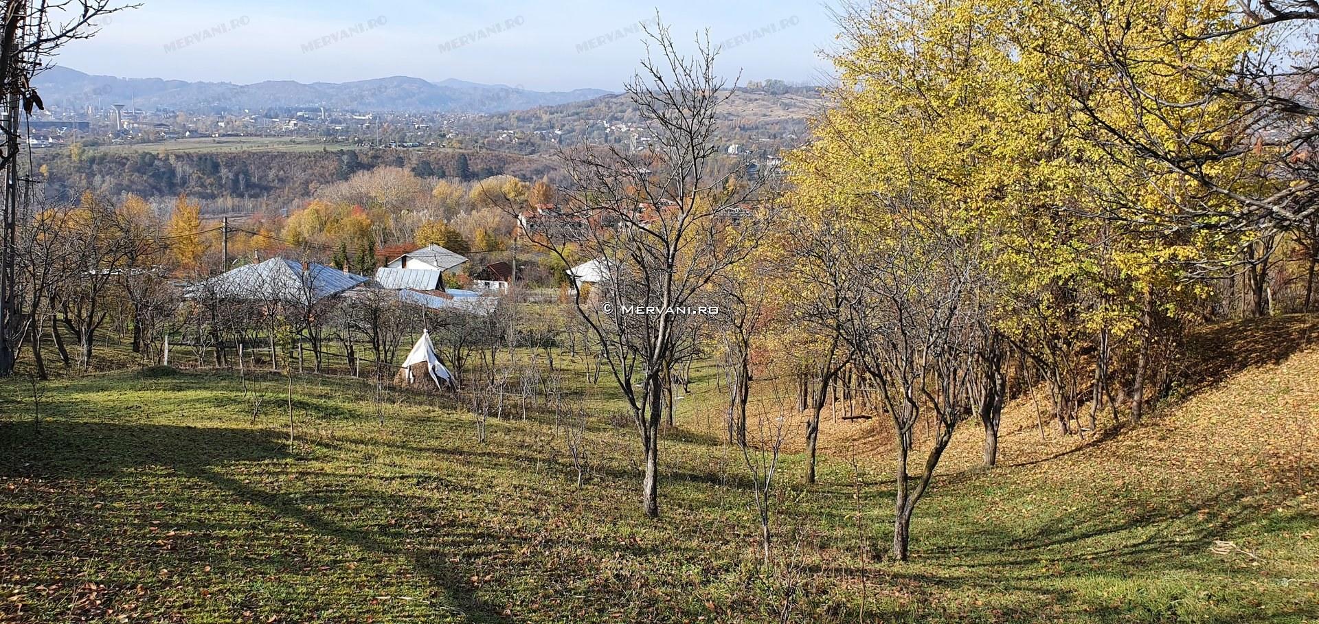 X31D04 – Teren de Vanzare in Telega, zona Doftana