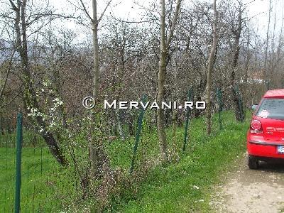X3AAA – Teren de Vanzare in Cornu, zona Centrala