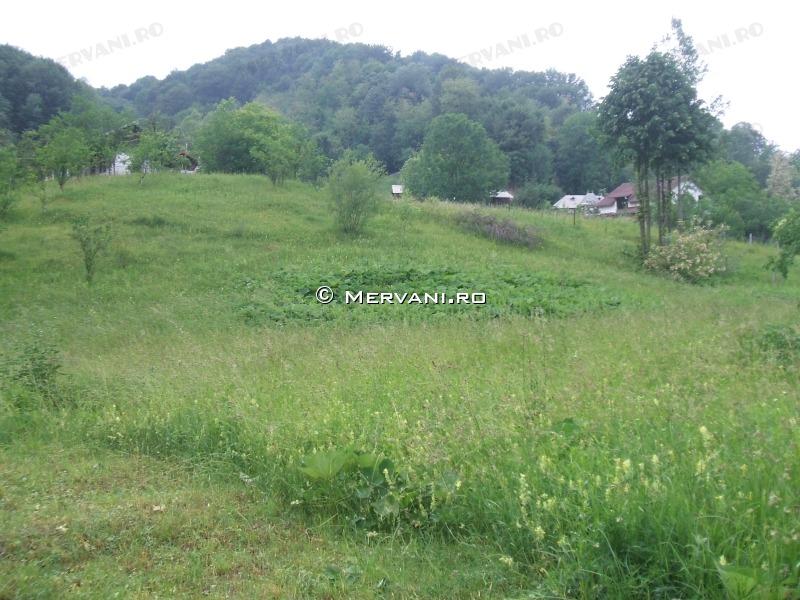 X3118E – Teren de Vanzare in Provita, zona Draganeasa