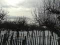 Teren de vanzare in Campina (zona Voila). Imagine pentru oferta X31309 (Fotografia 2).
