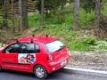 Teren de vanzare in Sinaia (zona Ferdinand). Imagine pentru oferta X31384 (Fotografia 6).