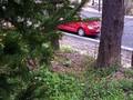 Teren de vanzare in Sinaia (zona Ferdinand). Imagine pentru oferta X31384 (Fotografia 9).