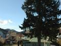 Pensiune cu 12 camere de vanzare in Busteni (zona Centrala). Imagine pentru oferta X413AF (Fotografia 25).