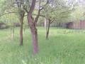 Teren de vanzare in Cornu (zona Cornu de Sus). Imagine pentru oferta X314D2 (Fotografia 4).