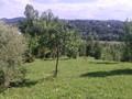 Teren de vanzare in Poiana Campina (zona Semicentrala). Imagine pentru oferta X31545 (Fotografia 3).