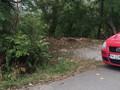 Teren de vanzare in Telega (zona Doftana). Imagine pentru oferta X315F5 (Fotografia 2).