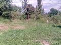 Teren de vanzare in Poiana Campina (zona Ragman). Imagine pentru oferta X3176E (Fotografia 4).
