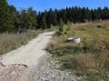 Teren de vanzare in Azuga (zona Partia de Ski). Imagine pentru oferta X31777 (Fotografia 4).