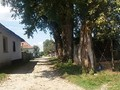 Teren de vanzare in Rasnov (zona Glajeriei). Imagine pentru oferta X31782 (Fotografia 5).