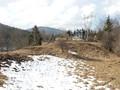 Teren de vanzare in Valea Doftanei (zona Valea Neagra). Imagine pentru oferta X31887 (Fotografia 5).