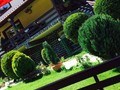 Spatiu Turistic cu 8 camere de vanzare in Predeal (zona Trei Brazi). Imagine pentru oferta X418A0 (Fotografia 32).
