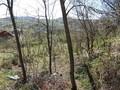 Teren de vanzare in Cornu (zona Cornu de Jos). Imagine pentru oferta X318C7 (Fotografia 2).