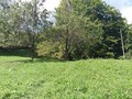 Teren de vanzare in Comarnic (zona Ghiosesti). Imagine pentru oferta X311CC (Fotografia 2).
