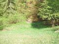 Teren de vanzare in Valea Doftanei (zona Valea Neagra). Imagine pentru oferta X3732 (Fotografia 10).