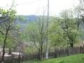 Teren de vanzare in Valea Doftanei (zona Semicentrala). Imagine pentru oferta X3D67 (Fotografia 10).