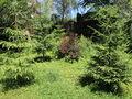 Vila cu 6 camere de vanzare in Sinaia. Imagine pentru oferta X219E9 (Fotografia 6).