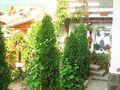 Pensiune cu 14 camere de vanzare in Busteni (zona Valea Alba). Imagine pentru oferta X4B0A (Fotografia 7).