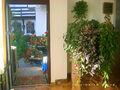 Pensiune cu 14 camere de vanzare in Busteni (zona Valea Alba). Imagine pentru oferta X4B0A (Fotografia 17).