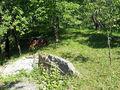Casa de vanzare in Sotrile (zona Lunca Mare). Imagine pentru oferta X11C16 (Fotografia 6).