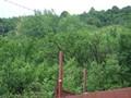 Teren de vanzare in Cornu (zona Cornu de Jos). Imagine pentru oferta X3B19 (Fotografia 10).
