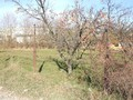 Teren de vanzare in Breaza (zona Capul Campului). Imagine pentru oferta X3C3A (Fotografia 10).