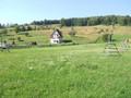 Teren de vanzare in Valea Doftanei (zona Valea Neagra). Imagine pentru oferta X3462 (Fotografia 2).