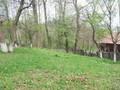Teren de vanzare in Valea Doftanei (zona Semicentrala). Imagine pentru oferta X3D67 (Fotografia 2).