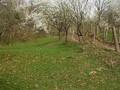 Teren de vanzare in Breaza (zona Nistoresti). Imagine pentru oferta X3260 (Fotografia 3).
