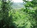 Teren de vanzare in Cornu (zona Cornu de Jos). Imagine pentru oferta X32EE (Fotografia 4).