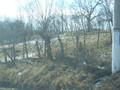 Teren de vanzare in Breaza (zona Podul Vadului). Imagine pentru oferta X35FD (Fotografia 3).