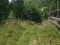 Teren de vanzare in Valea Doftanei (zona Traisteni). Imagine pentru oferta X3C36 (Fotografia 3).