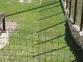 Teren de vanzare in Busteni (zona Piatra Arsa). Imagine pentru oferta X3E80 (Fotografia 7).