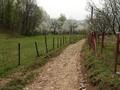 Teren de vanzare in Breaza (zona Nistoresti). Imagine pentru oferta X3260 (Fotografia 6).
