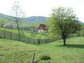 Teren de vanzare in Valea Doftanei (zona Valea Neagra). Imagine pentru oferta X3732 (Fotografia 6).