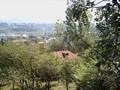 Teren de vanzare in Poiana Campina. Imagine pentru oferta 30I5 (Fotografia 5).